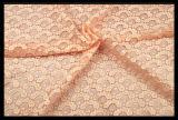 Gli accessori dell'indumento si dirigono il merletto del tessuto del vestito da modo della tessile