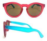 Nuevas gafas de sol plásticas del diseñador con insignia de encargo