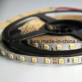 Curved blanda y compacta 12V Strip 2835 LED