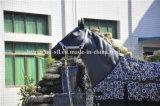 Manta de caballo bicolor del séquito
