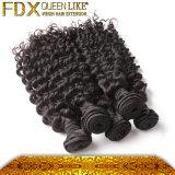 高品質のブラジルの深い波の人間の毛髪(FDX-BDW-#4)