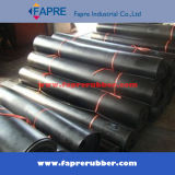 Sale caldo Industrial Black Viton Rubber Sheet in Roll/Mat.