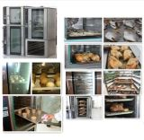 La Cina Home Appliance Built in Convection (fornitore CE&ISO9001)