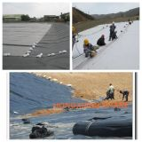 Pond Landfill와 Tunnel Liner를 위한 HDPE Impermeable Geomembrane