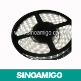 Luz de tira impermeable del IP 65 LED