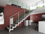 Stainless Steel Baluster를 가진 실내 Staircase Glass Balustrades