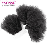 Brasilianischer Afro-verworrenes lockiges Haar mit Spitze-Schliessen