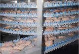Sistema di raffreddamento automatizzato del nastro trasportatore del frigorifero