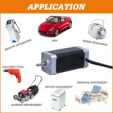 Home Appliance를 위한 24V Electric Brushless BLDC Hub DC Gear Motor