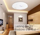 In het groot Decoratieve de Opgezette LEIDENE van China Lamp van het Plafond voor de Verlichting van het Huis