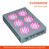 lámpara hortícola LED de 270W Evergrow