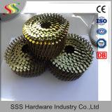편평한 코일, 15 정도 코일 못 /Wire 코일을%s 대조된 철사는 두바이 시장을 네일링한다
