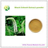 Порошок выдержки высокого качества 100% естественный черный Cohosh
