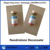 Poeder Nandrolone Decanoate van de Zuiverheid van 99% het Anabole Steroid