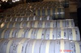 Dipped chaud Galvanized Steel Strip dans Coil