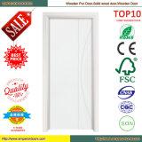 Porte intérieure de conception de porte de peinture de porte de fibre de verre