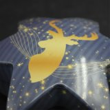 Олово /Metal коробки подарка шикарного Hexagram привесное/олово рождества (HS001-V9)
