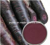 10:1 d'extrait de raccord en caoutchouc de /Black d'extrait de radis de noir d'approvisionnement d'usine, anthocyanine de 25%, anthocyanidines de 25%/poudre pourprée
