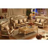 Sofà impostato/sofà del salone con il blocco per grafici di legno del sofà (992C)