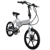 "250-500W 36-48V電池20 "" Foldable En15194が付いているGrankeeの電気自転車"
