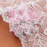 merletto svizzero del voile di 17.5cm per gli indumenti intimi sexy delle ragazze