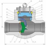 O interruptor FL do Bw do certificado ISO9001 termina a válvula de verificação