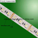 120LEDs/M SMD5050 두 배 줄 온난한 백색 LED 빛 지구