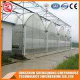 Serra dell'interno del film di materia plastica della tenda di agricoltura crescente con il sistema idroponico