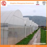 꽃 또는 과일 또는 야채 차양 시스템을%s 가진 성장하고 있는 폴리에틸렌 필름 온실