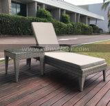 2017新しいサンルームの屋外のラウンジのプールの側面及びホテルを使用して柳細工の家具の庭のラウンジ