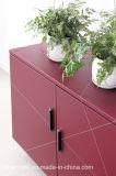 현대 디자인 PVC 가죽 (S603)를 가진 높은 좋은 품질 책장