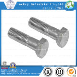Acero inoxidable / acero hexagonal Tornillo