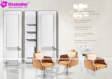 De populaire Stoel Van uitstekende kwaliteit van de Salon van de Kapper van de Shampoo van het Meubilair van de Salon (P2016)
