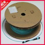 100Gig 24 de MPO aan MPO OM3 Optische Kabel van Kernen
