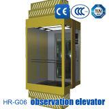 観察のエレベーターのパノラマの上昇