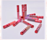 Lustre duradero del labio del lápiz labial líquido mate impermeable del terciopelo del maquillaje de 12 colores