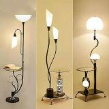 Lumière décorative moderne de lampe d'étage de salle de séjour de DEL