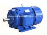 Alta efficienza di Ie2 Ie3 motore elettrico Ye3-315s-8-55kw di CA di induzione di 3 fasi
