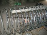 Solo alambre de púas galvanizado de la bobina del acero inoxidable
