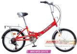 Stels 24のインチ1の速度の折る自転車(ANB12FDB-2413)