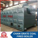 Chaudière à vapeur allumée par charbon industriel de série de Dzl