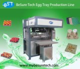 Bandeja semi automática del huevo que hace la máquina (ETS1200A)