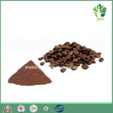 Polvere di cacao organica naturale pura di alta qualità, additivo alimentare