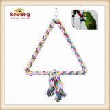 Естественно игрушки любимчика/птица Toys (KBB008)