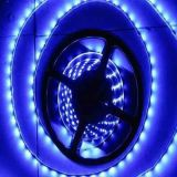 Flexibles SMD3528 LED Streifen-Licht 120LEDs/M der hohen Helligkeits-mit IEC/En62471