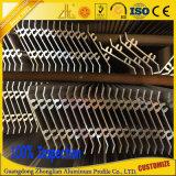 Qualité anodisée/auvent en aluminium enduit d'aluminium obturateur de poudre