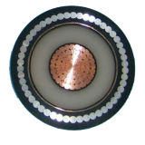 Cabo distribuidor de corrente isolado de cobre/de alumínio do condutor XLPE (polietileno ligado)