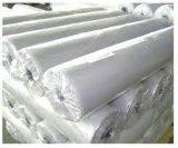 Fornitore bianco di Masterbatch delle materie plastiche