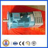 Motore dell'elevatore della costruzione per Gjj