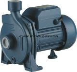 Bombas elétricas centrífugas do impulsor de bronze do fio de cobre da alta qualidade 230V para a água